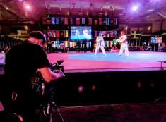 Taekwondo Action